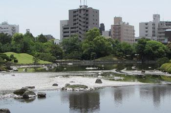 写真④水前寺公園の池