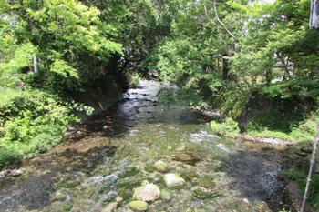 写真⑤加勢川
