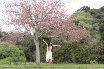 写真④桜の木の下のモデルさん
