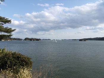 写真②松島