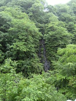 写真②山中の滝