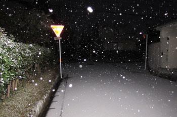 写真①いつの間にか雪が