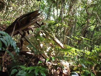 51-1-龍湖瀬坑・坑道上にあった山神社の痕跡-s